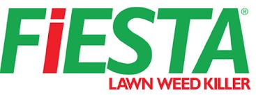 Fiesta Logo